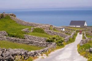 Heuvels tijdens een Familiereis ierland